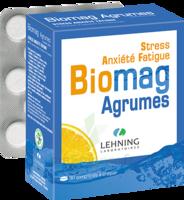 Lehning Biomag Comprimés à Croquer Agrumes B/90 à Versailles