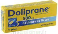 Doliprane 500 Mg Gélules B/16 à Versailles
