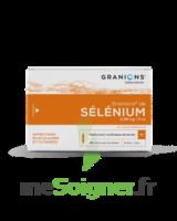 Granions De Selenium 0,96 Mg/2 Ml S Buv 30amp/2ml à Versailles