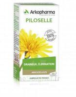 Arkogélules Piloselle Gélules Fl/45 à Versailles