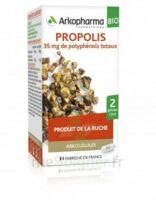 Arkogélules Propolis Bio Gélules Fl/45 à Versailles