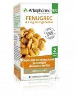 Arkogélules Fenugrec Bio Gélules Fl/40 à Versailles