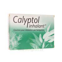 Calyptol Inhalant, émulsion Pour Inhalation Par Fumigation à Versailles
