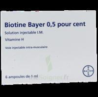 Biotine Bayer 0,5 Pour Cent, Solution Injectable I.m. à Versailles