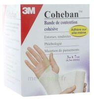 Coheban, Blanc 3 M X 7 Cm à Versailles