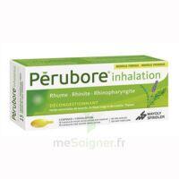 Perubore Caps Inhalation Par Vapeur Inhalation Plq/15 à Versailles