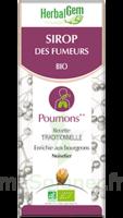 Herbalgem Sirop Bio Des Fumeurs 150ml à Versailles