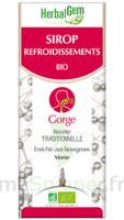 Herbalgem Sirop Bio Refroidissement 150ml à Versailles