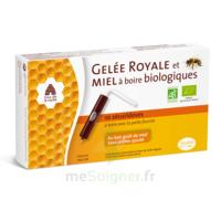 Pileje Gelée Royale & Miel à Boire Biologiques 10 Sécuridoses De 10ml à Versailles