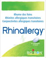Boiron Rhinallergy Comprimés B/40 à Versailles