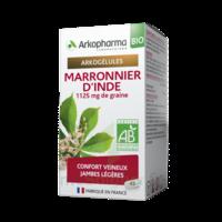 Arkogélules Marronnier D'inde Bio Gélules Fl/45 à Versailles
