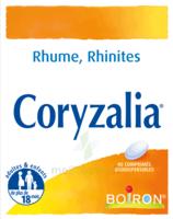 Boiron Coryzalia Comprimés Orodispersibles à Versailles